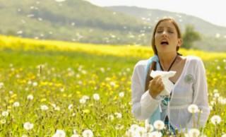 alergia_primaveralfarmatopventas