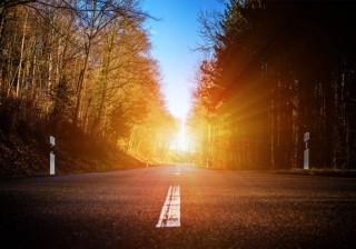 sol_inviernofarmatopventas
